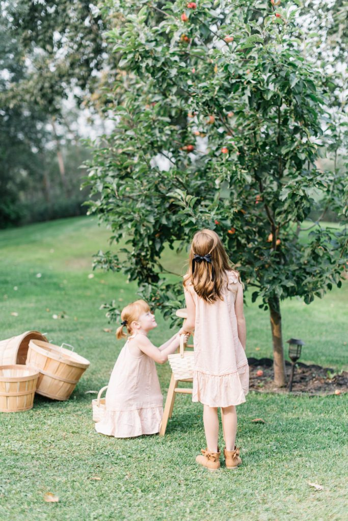 2 girls pick apples from an apple tree