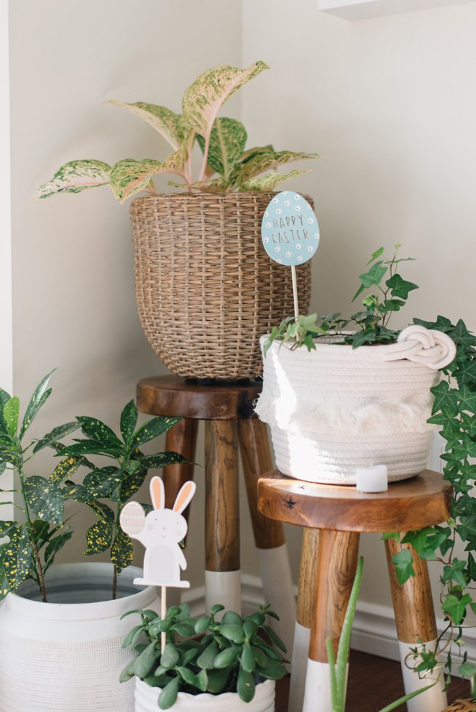 Plants on wooden stands decorated for Easter