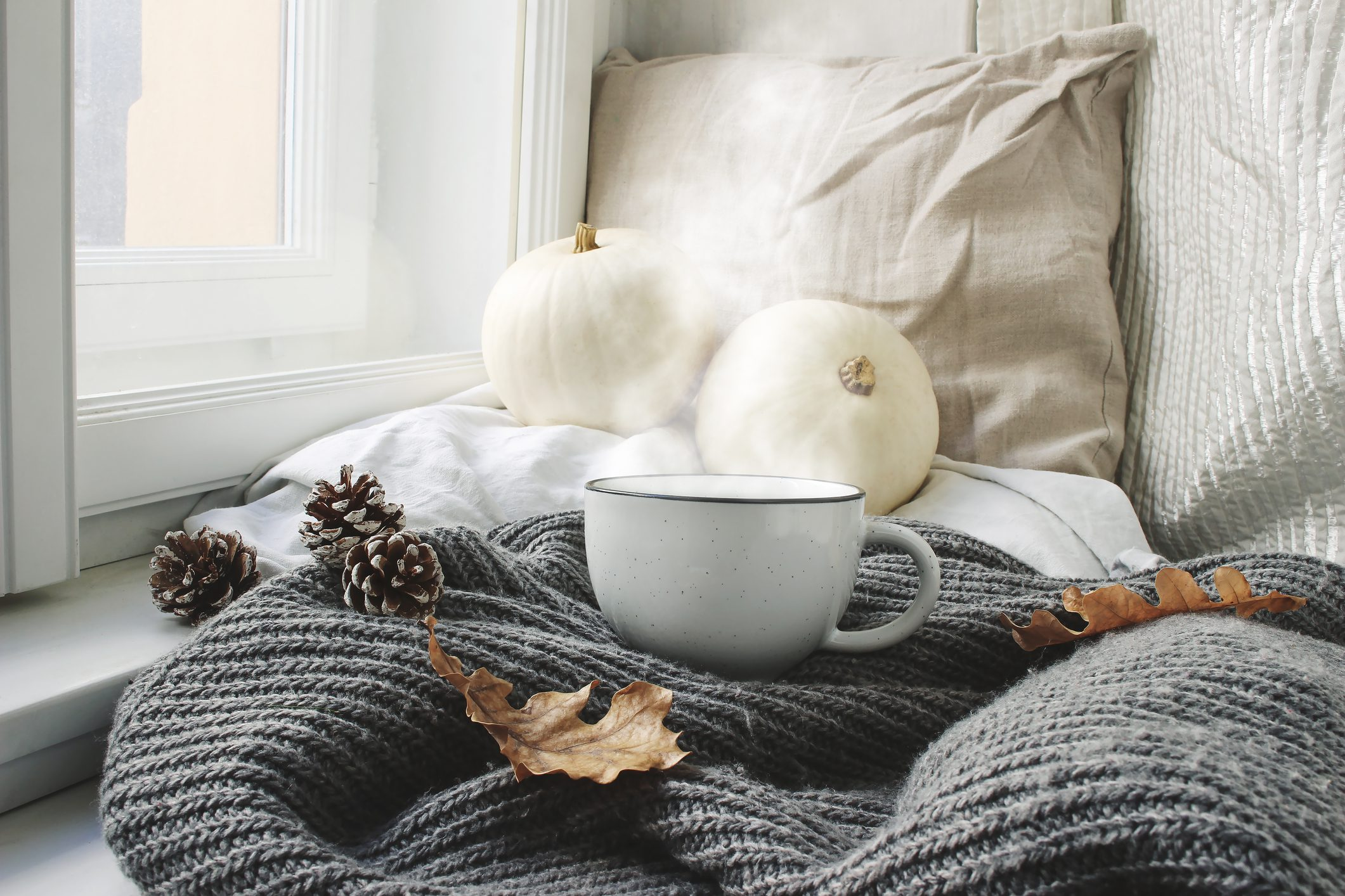 A cup of steaming coffee sitting on top of a window seat with pumpkins leaves and pinecones