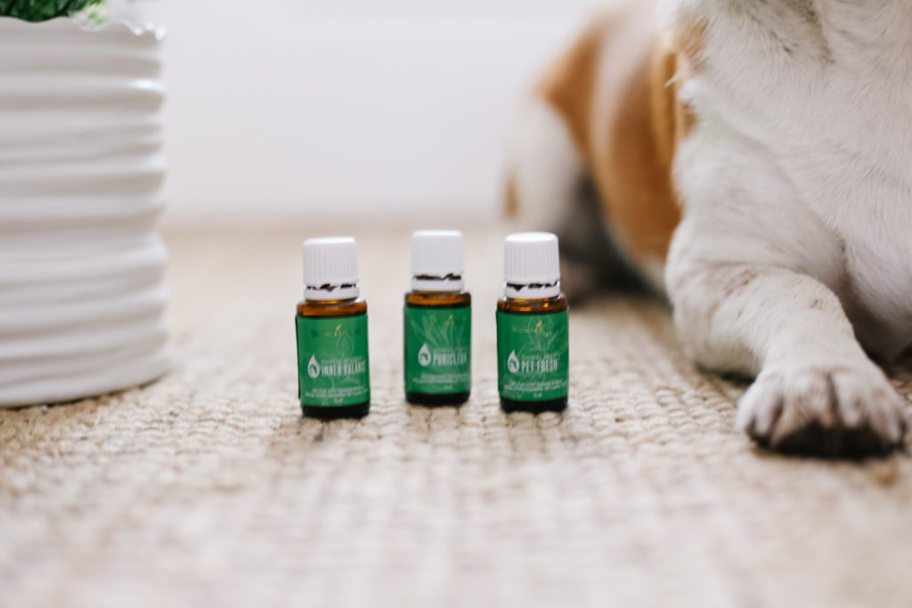 3 bottles of essential oil blends just for dogs