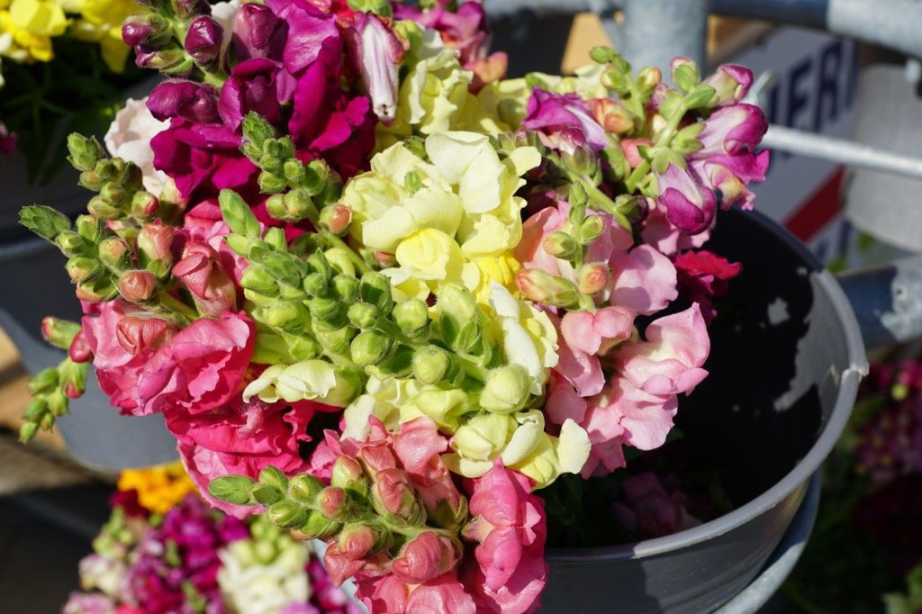 A close up of a bucket of cut flowers