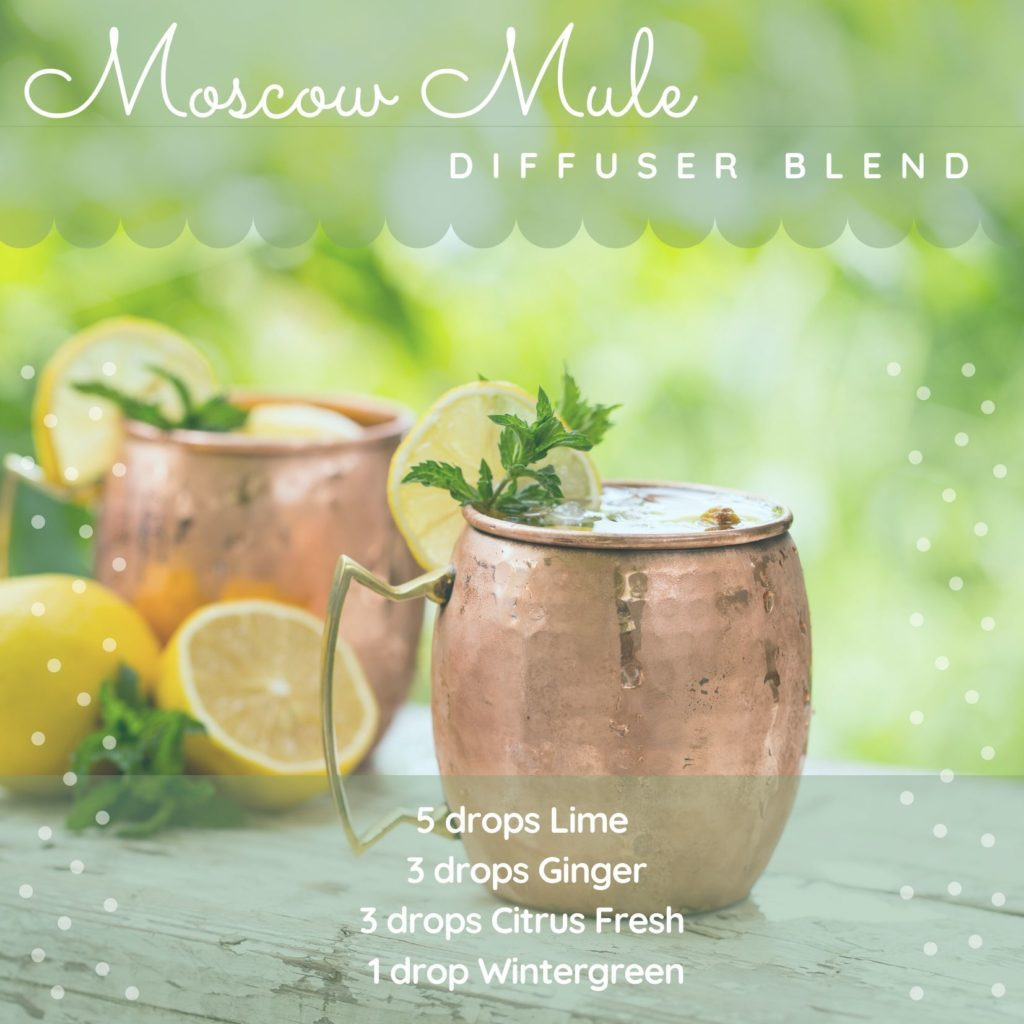 moscow mule diffuser blend recipe