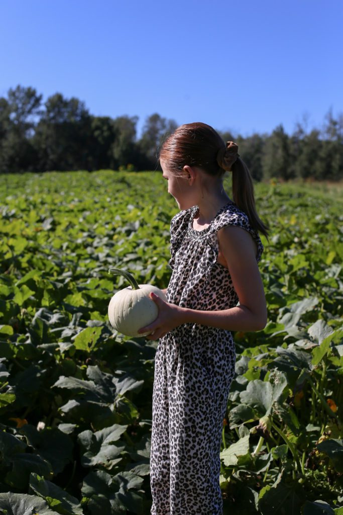 a girl holds a white pumpkin looking out into the field