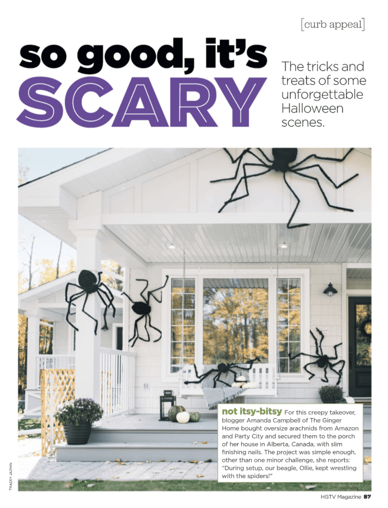 HGTV giant spider feature page