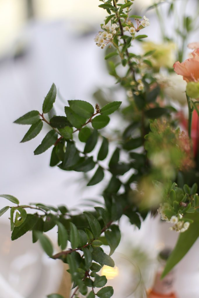 A close up of greens in a floral arrangement