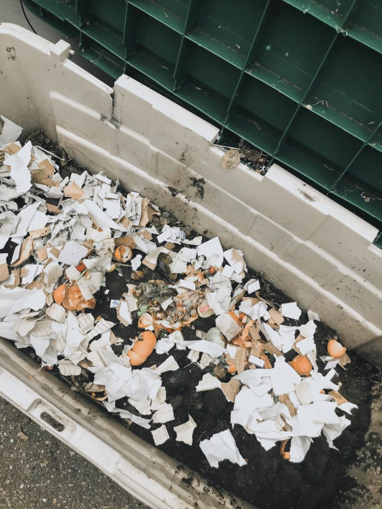 A backyard compost pile with egg shells - a great way to start urban homesteading